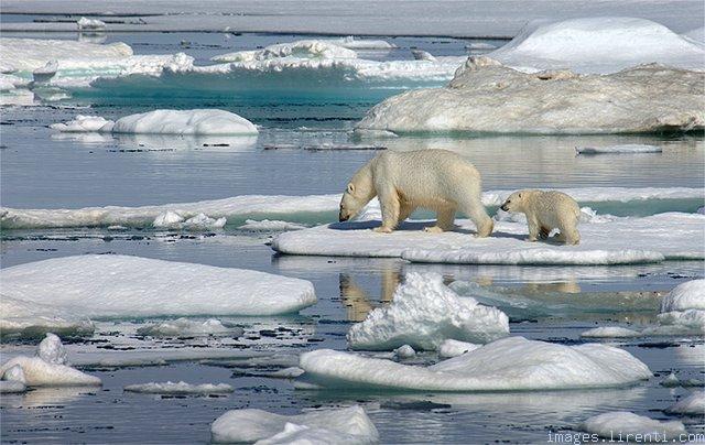 Foto mahnitese nga natyra